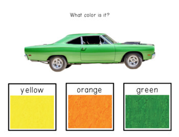 What color is it? ⋅ Interactive PDF, Boom Cards, and Quiz ⋅ Distance Learning