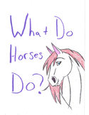 What do Horses Do? How Do they Move?