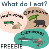 A D Ed Fe B besides Fceaa Cd Ad Adaa B Ecb B Carnivore Grade besides C Dbb Da A A Da Fe Af together with Diet also A D E C E Bb Eacf Fc. on herbivore omnivore carnivore sorting activity fun