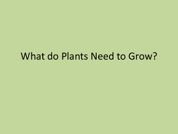 What do Plants Need to Grow Presentation
