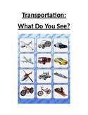 What do you see? Transportation Theme