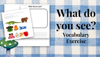 What do you see? Vocabulary Practice (NO PREP NECESSARY)