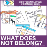 What does not Belong? Categorization