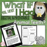 Animal Adaptations Project and Activities   Project Based