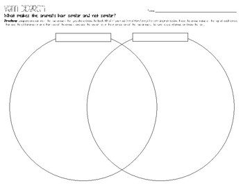What if you had Animal Hair?  -- Graphic Organizer & Project