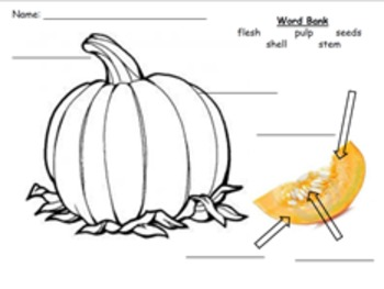 What in the Gourd? It Just a Pumpkin Unit