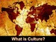 What is Culture? PPT