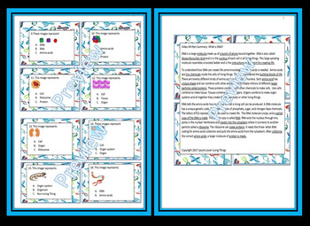 What is DNA Video Worksheet, Crossword Puzzle, Quiz, and Task Cards