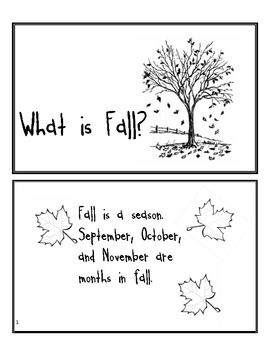 What is Fall? Story