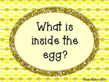 What is Inside the Egg?
