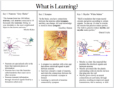 What is Learning? (The Synapse Page Lesson Plan Structure)
