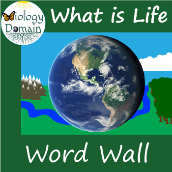 What is Life? Word Wall Vocabulary Cards