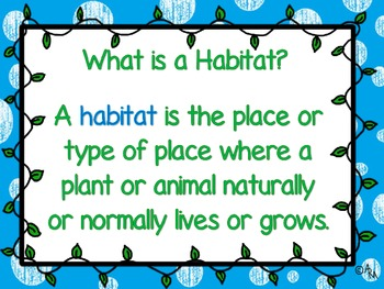 What is My Habitat?