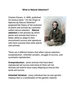 What is Natural Selection? Common Core activities