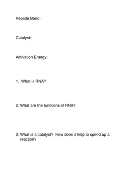 What is RNA? Common Core Activities