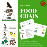 What is a Food Chain? Autism Unit