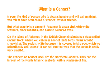 What is a Gannet?