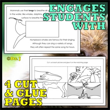 Animal Classes for K-3: WHAT IS A MAMMAL? (Cut-and-Glue Science)