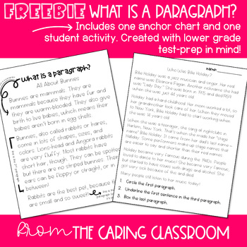 What is a Paragraph? Reader's Workshop FREEBIE