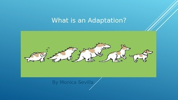 What is an Adaptation? PowerPoint