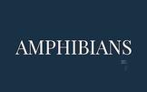 What is an Amphibian? PREZI