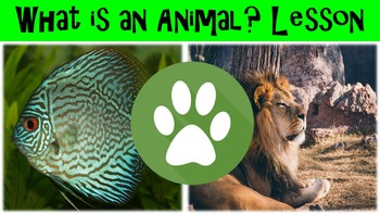 What is an Animal? Lesson with Power Point, Worksheet, and Review Questions