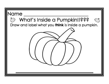 What is inside a pumpkin Science project