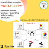 What is it? Semantic feature analysis - describing objects by key attributes