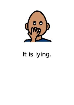 What is lying? Social story visual explanation