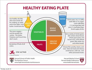 What is on your plate? pdf