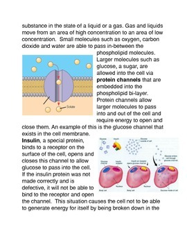What is the Cell Membrane? Common Core Activity