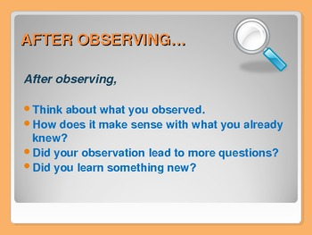 What is the Matter? Powerpoint Presentation and Investigation