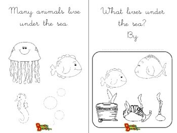 What lives under the sea?