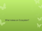 What makes and ecosystem? by Zie