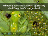 What might scientists learn by tracing the life cycle of a
