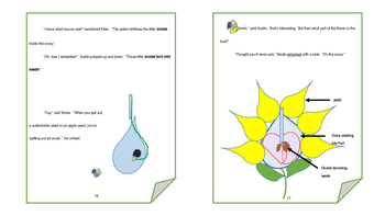 What's All the Buzz About:  Pollination and Fertilization book and lesson plan
