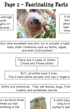What's All the Fuss About Sloths? Reading Comprehension
