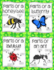 What's Buggin' You? An Insect Thematic Unit Grades 1-3