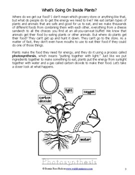 What's Going on Inside Plants?-Learning About Science Level 3 Print Version