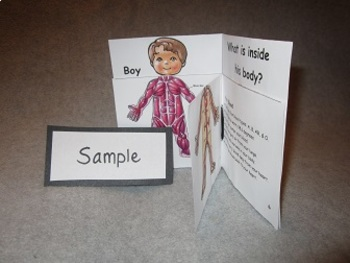 What's Inside the Human Body? Fun Flip Book Project
