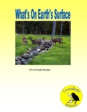 What's On Earth's Surface - Science Informational Text - S