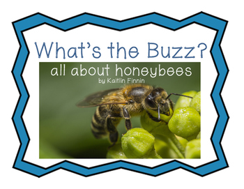 What's The Buzz: All About Honeybees