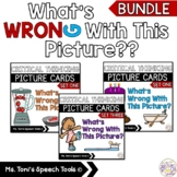 What's Wrong With This Picture BUNDLE-Distance Learning