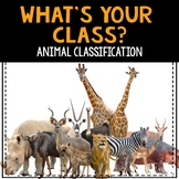 What's Your Class? Animal Classification