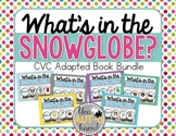 What's in the Snow Globe?  CVC Adapted Book BUNDLE