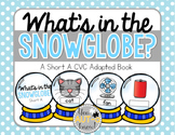What's in the Snow Globe?  CVC Adapted Book: Short A Version
