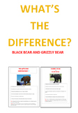 What's the Difference? Black Bear and Grizzly Bear