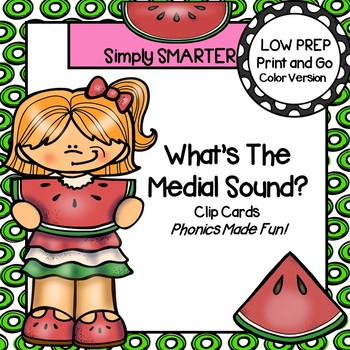 What's the Medial Sound?:  LOW PREP Summer Themed Clip Cards