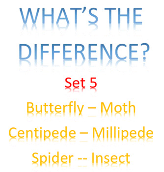 What's the difference? -- Set 5