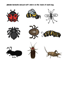 What's Bugging You? Adapted Book for Children with Autism